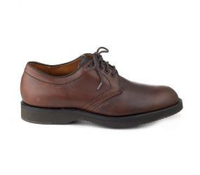 Alden Plain Toe C.D.I. Brown Oxford