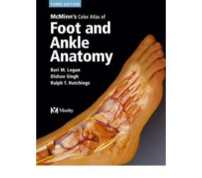 FOOT AND ANKLE ANATOMY